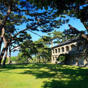 The Pine Garden