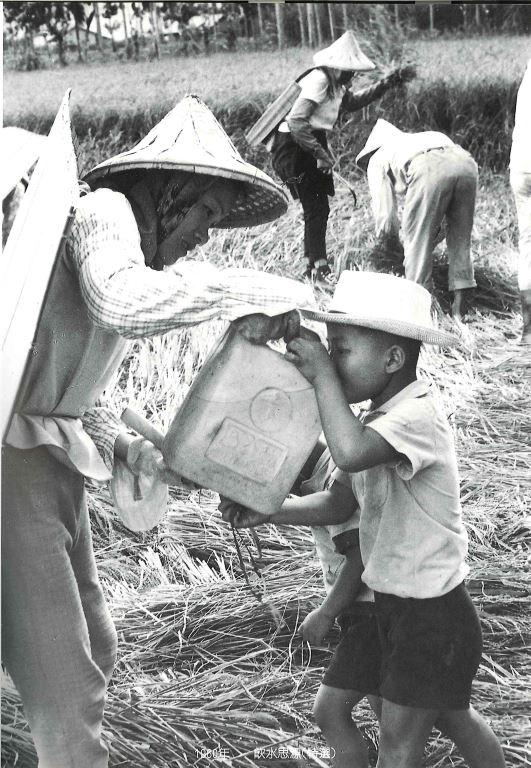 飲水思源 1960