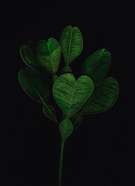 植物與記憶