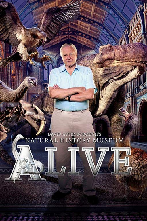 12/25(三)09:30  博物館復活記David Attenborough's Natural History Museum Alive
